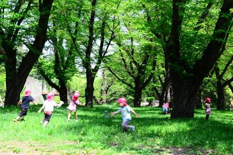 森の中で遊ぶ